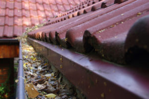 Dirty Gutters with leaves