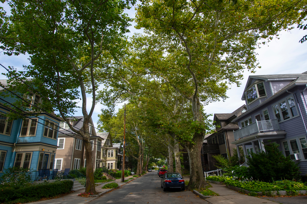 Residential Street in Brookline, MA